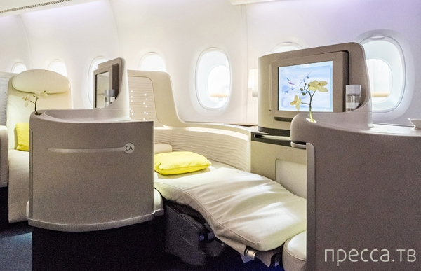 Креативное устройство салона самолета (24 фото)