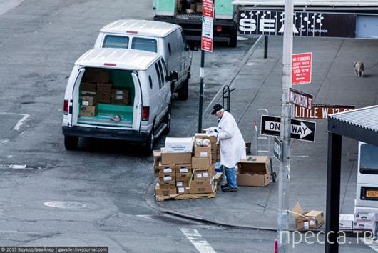 Особенности Нью-Йоркской парковки (22 фото)