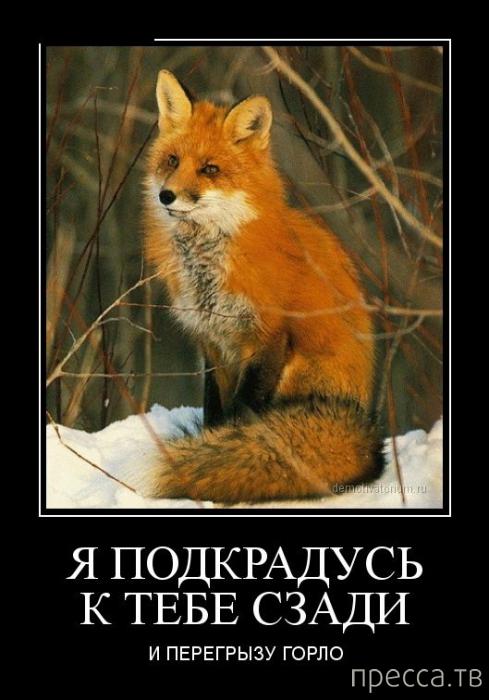 podkralsya-k-devushke-szadi
