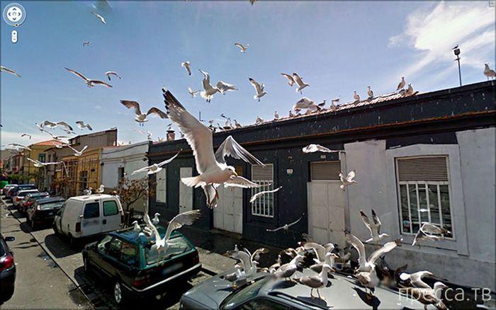 Красивые фотографии с Google Street View (23 фото)