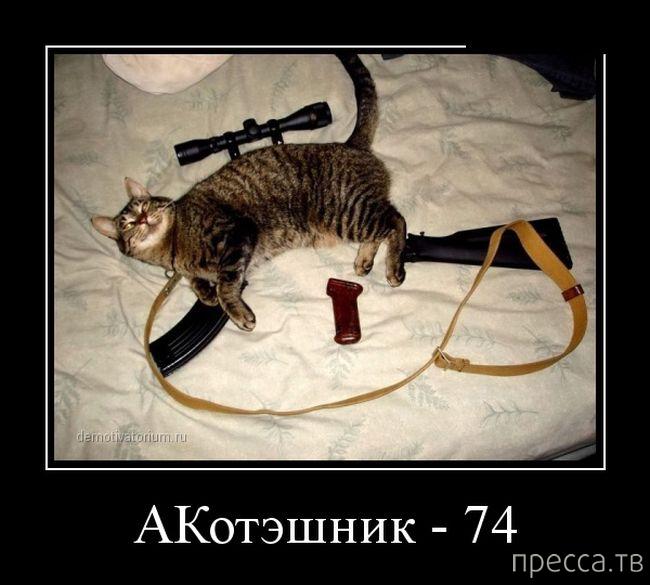 Самые злобные демотиваторы, часть 42 (56 фото)