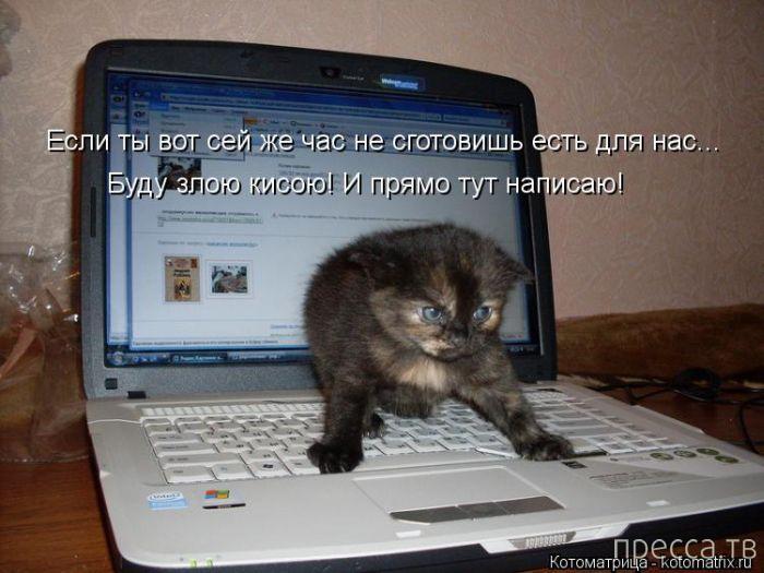http://www.pressa.tv/uploads/posts/2013-11/1384634309_y28.jpg