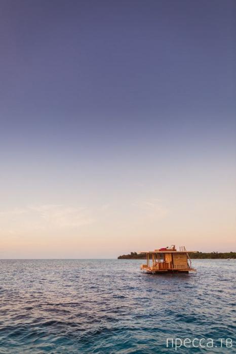 Волшебный морской отель на Занзибаре (11 фото)