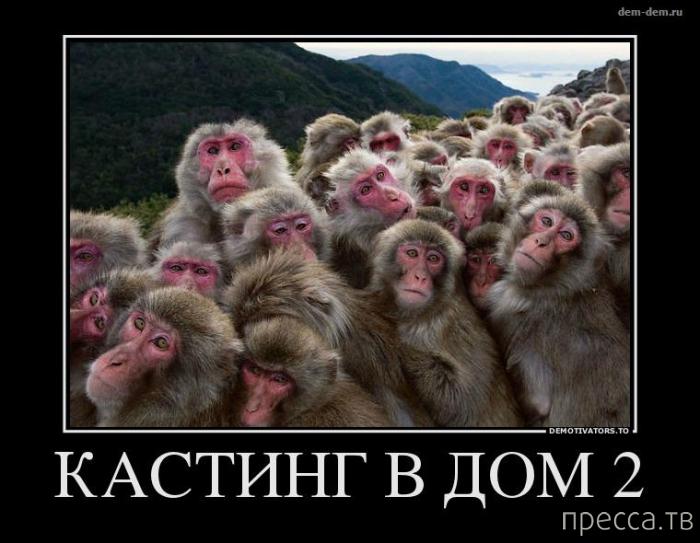 Самые злобные демотиваторы, часть 50 (28 фото)