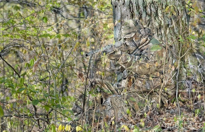 Найди на фото спрятавшихся снайперов (10 фото)