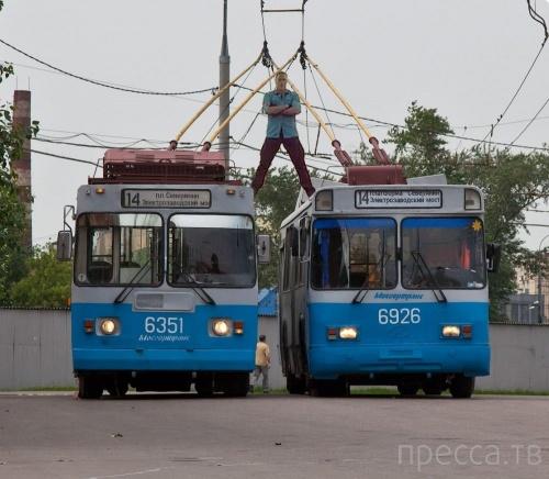 Интернет-мемы Рунета (11 фото)
