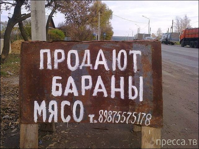 Народные маразмы - реклама и объявления, часть 154 (24 фото)