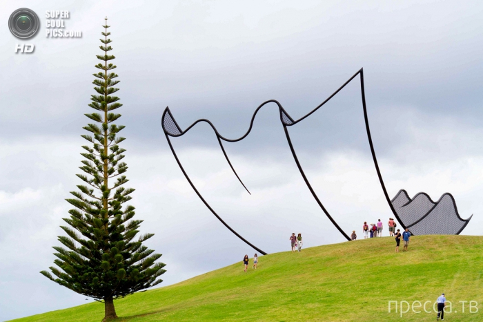 Скульптура-салфетка в Новой Зеландии (7 фото)