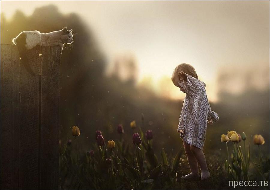 Светлые моменты (11 фото)