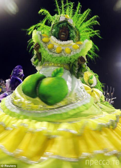 Стартовал бразильский карнавал (33 фото)