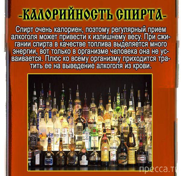 Самые известные мифы об алкоголе (11 фото)