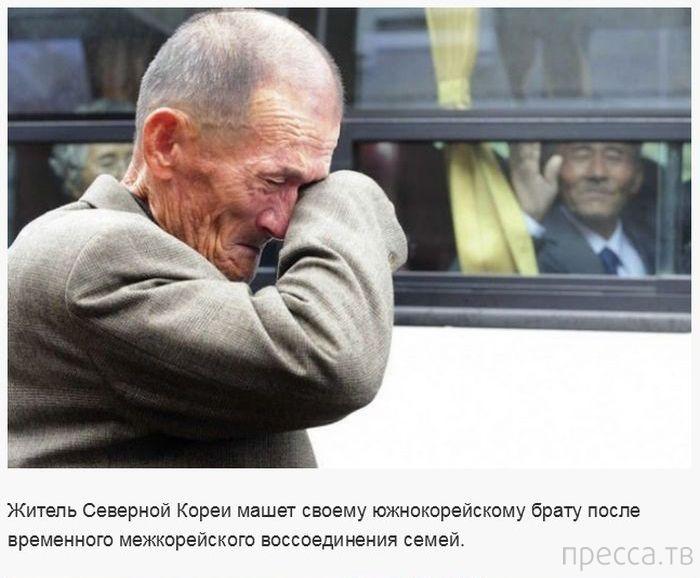 Эмоциональные фотографии (33 фото)