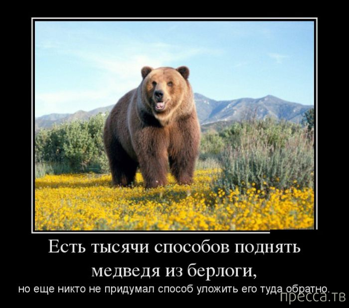 В России готовят переброску в Украину 15 диверсионных групп, - СМИ - Цензор.НЕТ 1369
