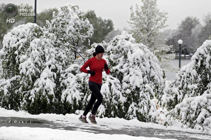 Америку засыпало снегом (8 фото)