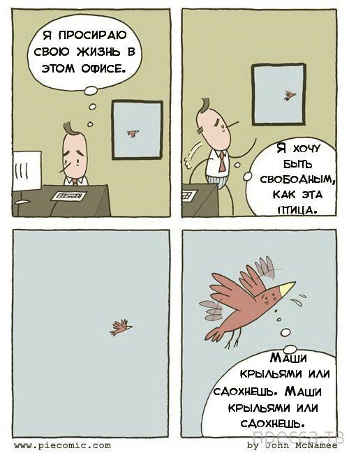 Веселые комиксы и карикатуры, часть 129 ( 13 фото)