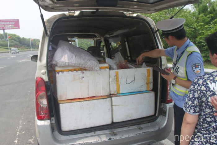 Микроавтобус с необычной находкой в Китае (3 фото)