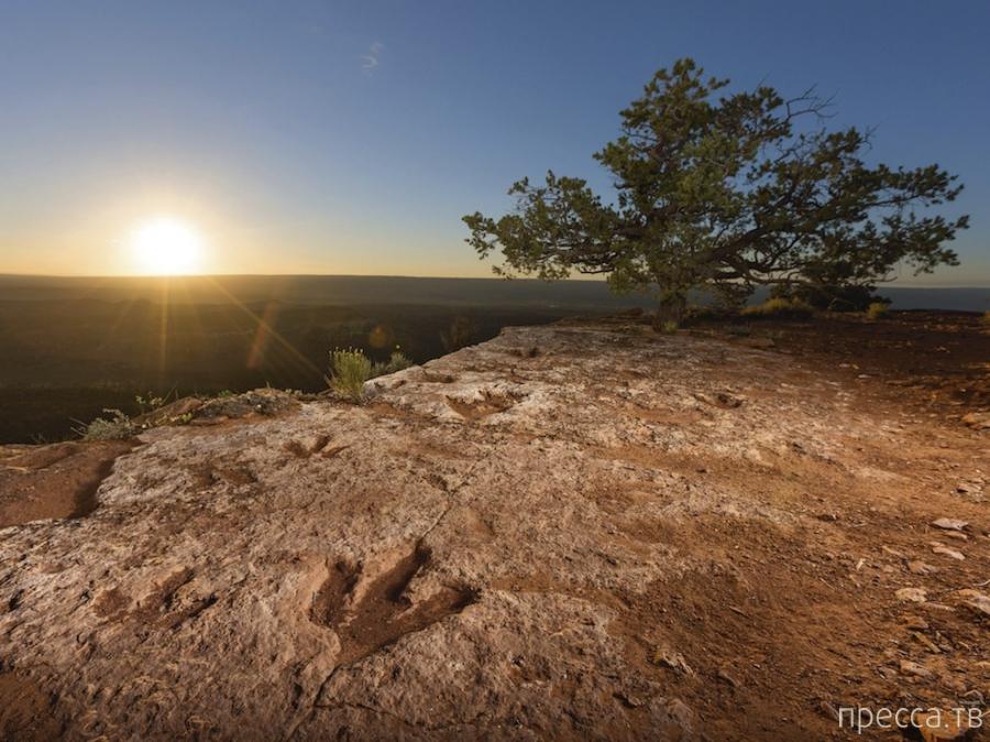 Лучшие фотографии мая 2014-го от журнала National Geographic и National Geographic России (21 фото)