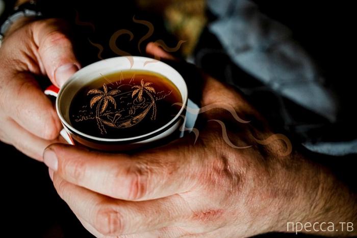 """Фото проект от команды - IllFo («Ильфо»), под названием """"Утренние мечты"""" (13 фото)"""