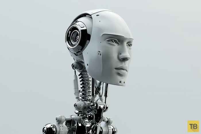 Топ 10: Профессии в 2030 году (10 фото)
