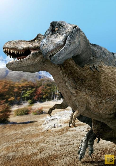 Как выглядел доисторический секс у динозавров? (6 фото)