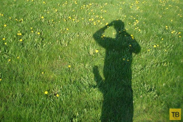 Развратная тень (25 фото)