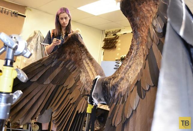Как создавались костюмы к фильму 'Малифисента' (11 фото)