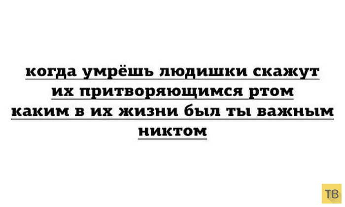 Подборка прикольных фотографий, часть 190 (101 фото)