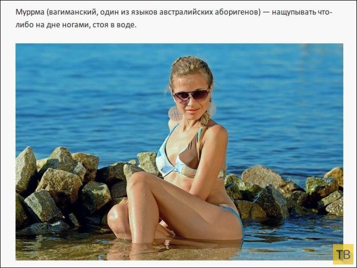 Иностранные слова, у которых нет перевода в русском языке (25 фото)