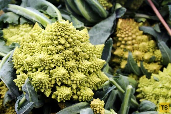 Топ 7: Самые необычные фрукты и овощи (7 фото)