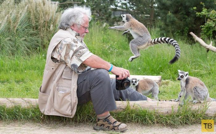 Замечательные животные из разных уголков мира (18 фото)
