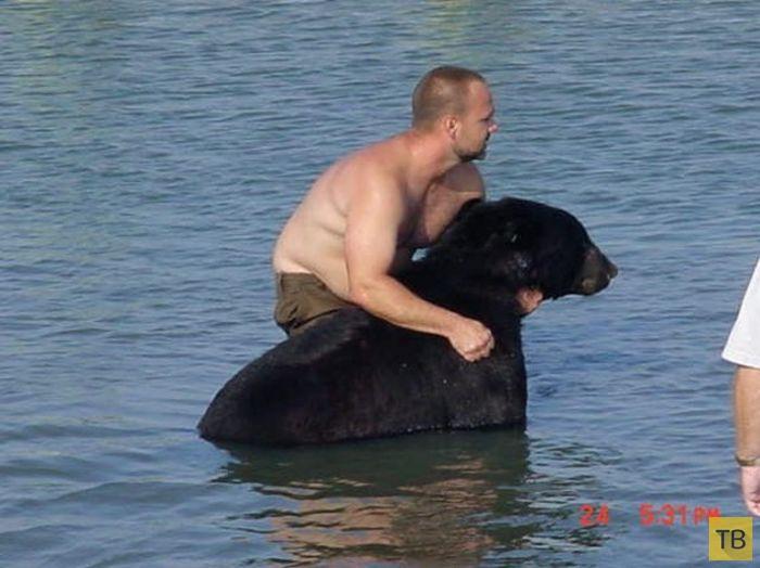 Во  Флориде мужчина спас тонущего в океане медведя (16 фото)