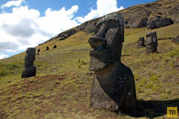 Есть ли у голов на острове Пасхи ноги? (12 фото)