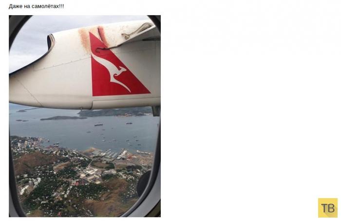Всем, кто собирается в Австралию (25 фото)