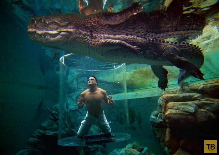 Невероятные и живописнейшие бассейны планеты (21 фото)