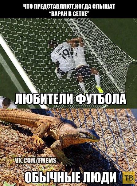 Немного о футболе (23 фото)