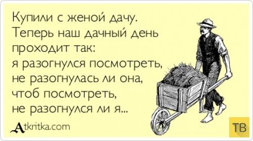 """Лучшие прикольные """"Аткрытки"""" за 2014 год (44 фото)"""