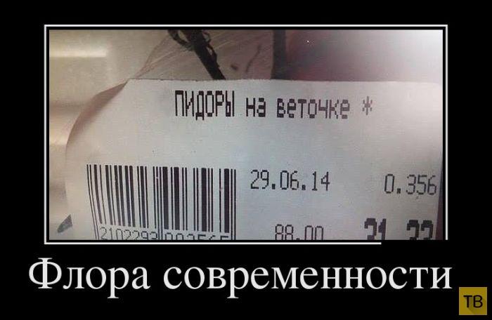 Подборка демотиваторов 14. 07. 2014 г (31 фото)