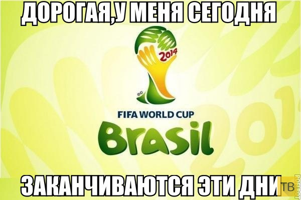 Германия - чемпион мира по футболу 2014 (21 фото)