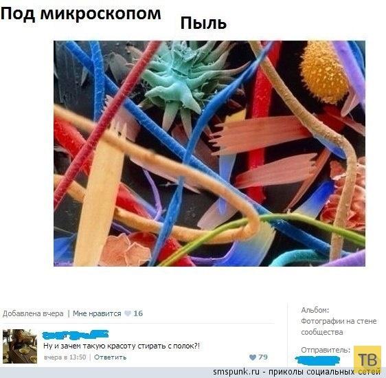 Прикольные комментарии из социальных сетей, часть 194 (32 фото)