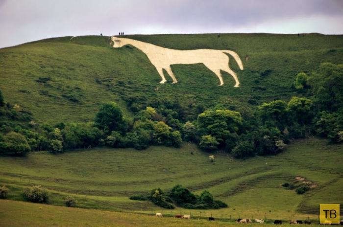 Белая лошадь: рисунок на холме, покрытый тайнами (11 фото)