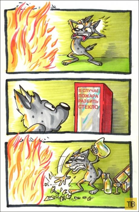 Веселые комиксы и карикатуры, часть 158 (24 фото)