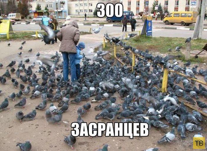 Подборка прикольных фотографий, часть 230 (102 фото)