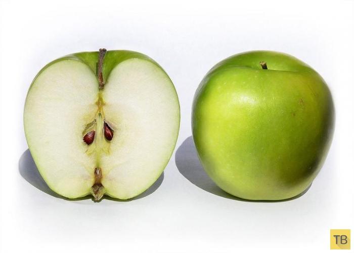 Топ 10: Ядовитые фрукты и овощи, ежедневно потребляемые нами в пищу (11 фото)