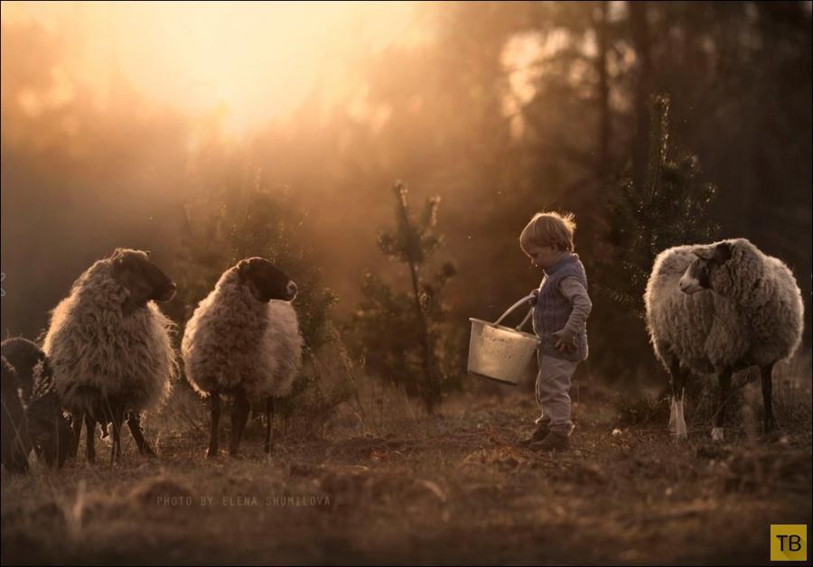 Лето, деревня, детство (23 фото)