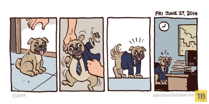 Веселые комиксы и карикатуры, часть 184 (18 фото)