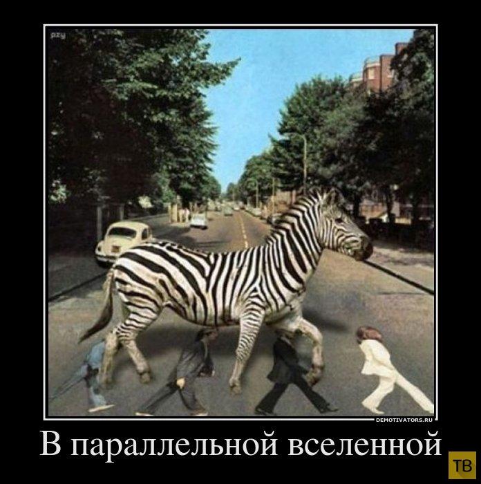 Подборка демотиваторов 10. 09. 2014 (32 фото)