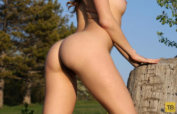Девушка разделась на природе (13 фото)