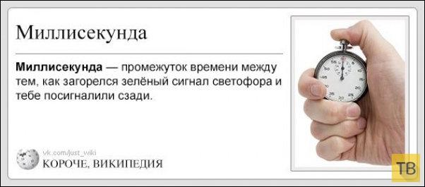 Альтернативная Википедия (29 фото)
