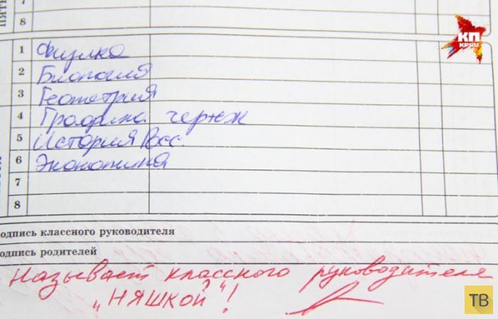 Приколы из школьных дневников (9 фото)