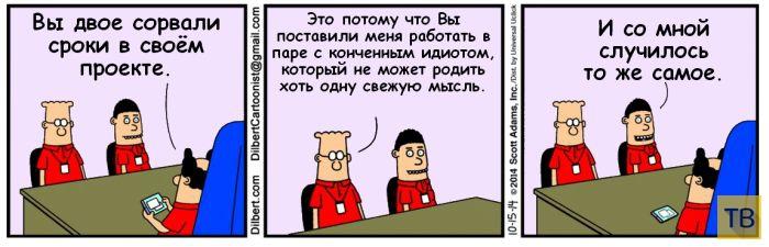 Веселые комиксы и карикатуры, часть 208 (18 фото)